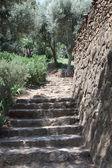 Stone steps. — Stock Photo