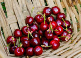 Fresh cherries for a healthy snack — Stock Photo