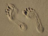 Pegadas na areia — Fotografia Stock