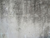 Concrete wall — Stock Photo