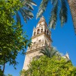 Codoba's mosque tower — Stock Photo