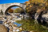 Under a Roman bridge from Jarandilla with forest background — Stock Photo
