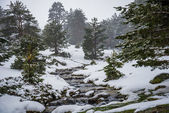 Snowy mountains with river in Madrid. — Stock Photo