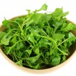 Watercress (Nasturtium officinale) — Stock Photo #27965185