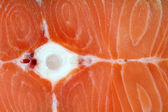 Closeup photography of raw salmon — Stock Photo