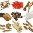 Assortment of Dried Chinese herbs — Stock Photo #28475375