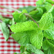 Fresh mint on on a Checkered table cloth — Stock Photo