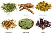 Assortimento di tè di erbe secche (da foglie, fiori) — Foto Stock