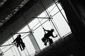 Window Cleaners (Window washers) working — Stock Photo