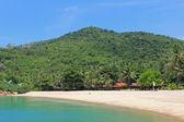 Bungalows along the Tropical Beach, Koh Phangan Island — Stock Photo