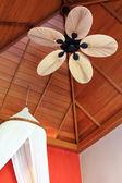 Palm blad-vormige plafond fan blade — Stockfoto