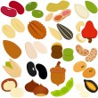 Icons of Beans, Nuts, Seeds — Stock Vector
