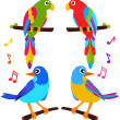 Parrots and Birds isolated on white — Stock Vector #28983733