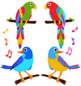 Parrots and Birds isolated on white — Stock Vector