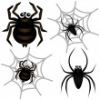 Spider & Spider Web — Vector de stock  #28999493