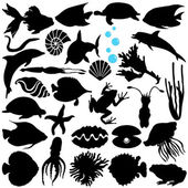 Silhouette of Fish, Sealife, (Marine life, seafood) — Stock Vector