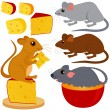 Rat Mouse and Cheese isolated on white — Stock Vector