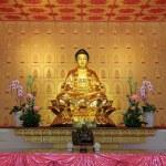 Buddha Statue at Changuang Temple, Taroko National Park, Taiwan — Stock Photo #29547239