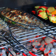 Grilled Fresh Fish (Trout) on the BBQ — Stock Photo