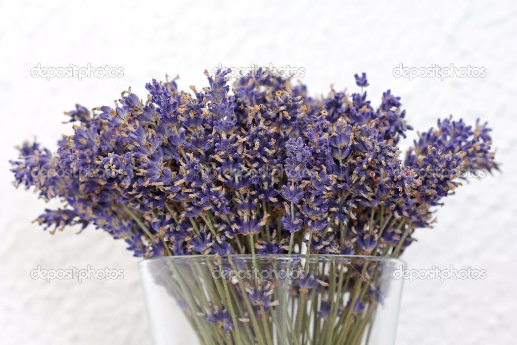 Un jarr n de flores secas de lavanda fotos de stock - Flores secas para decorar ...