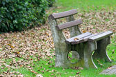 A bench in the park during Autumn season — Stok fotoğraf