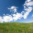 Green lawn under blue sky — Stock Photo