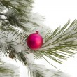 Christmas symbol — Stock Photo #14436655