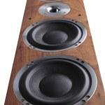 Wooden speaker — Stock Photo #35728713