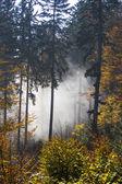 Hösten i bayern — Stockfoto