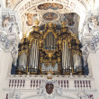 The largest organ in the world — Stock Photo