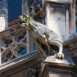 Gargoyle dog — Stock Photo