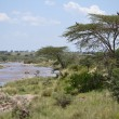Mara river — Stock Photo