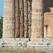 Valley of the Temples of Paestum - Stock Photo