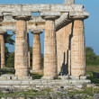 Valley of the Temples of Paestum — Stock Photo #13818913