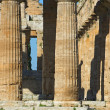 Valley of the Temples of Paestum — Stock Photo #13819067