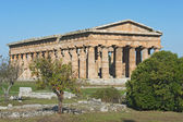 Valley of the Temples of Paestum — Stock Photo