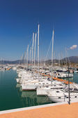 Yachts and motor boats in the harbor — Stok fotoğraf