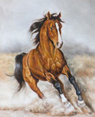 Oil painting of a horse on the prairie — Stock Photo