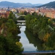 Royalty-Free Stock Photo: Arga River Across Pamplona 01