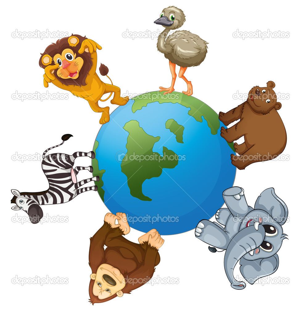 Various Animals Pictures Illustrtion of Various Animals