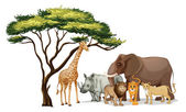 Animales africanos — Vector de stock