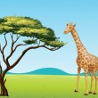 Giraffe by a tree - Stock Vector