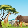 African animals - Vettoriali Stock