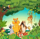 Zvířata v lese — Stock vektor
