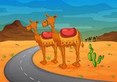 骆驼 — 图库矢量图片