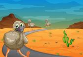 Emu in desert — Stock Vector