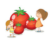 Girls and tomatoes — Stock Vector