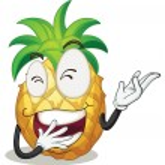 Pineapple — Stock Vector #13570192