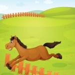 Horse — Stock Vector