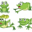 Green frogs — Stock Vector